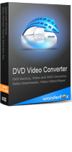 WonderFox DVD Video Converter 1-Year License