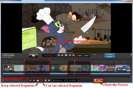 Windows media player trimmer plugin free