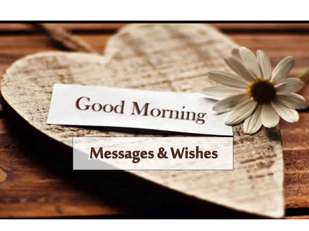 Download Good Morning Videos to Start Your Morning Greetings