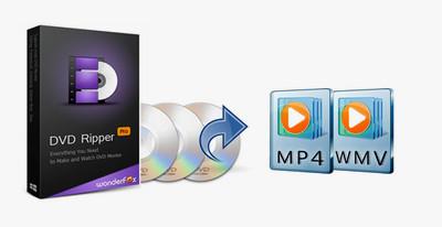 Dvd Player Windows 10