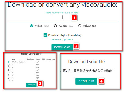 Best 2 Ways for iQiyi Download Online and Downloading iQiyi Videos