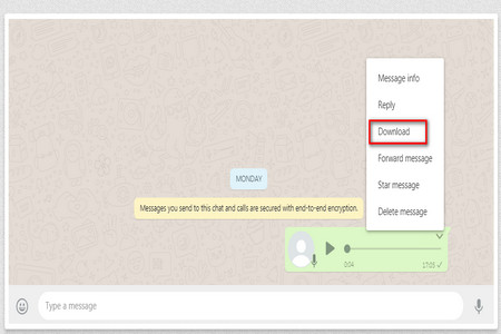 Easy Solutions on WhatsApp Voice Message Download on PC and Phone