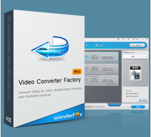 WonderFox FLV Video Converter