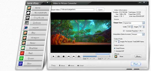Video to Picture Converter Overview